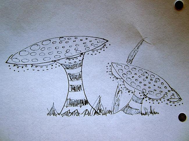 Doodle fungi